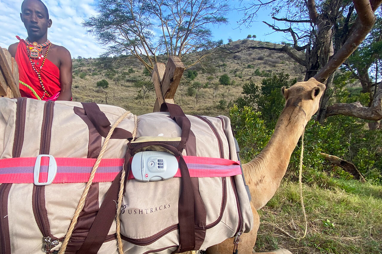 Noor saddles a camel and secures a Bushtracks bag - Photo by David Tett
