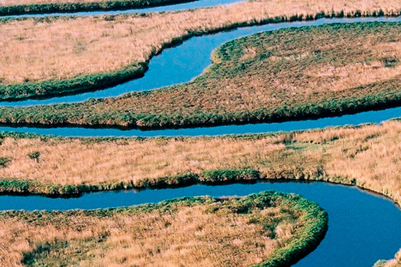 Aerial View of the Okavango Delta in Botswana - A Beautiful Bushtracks Expeditions Safari Destination