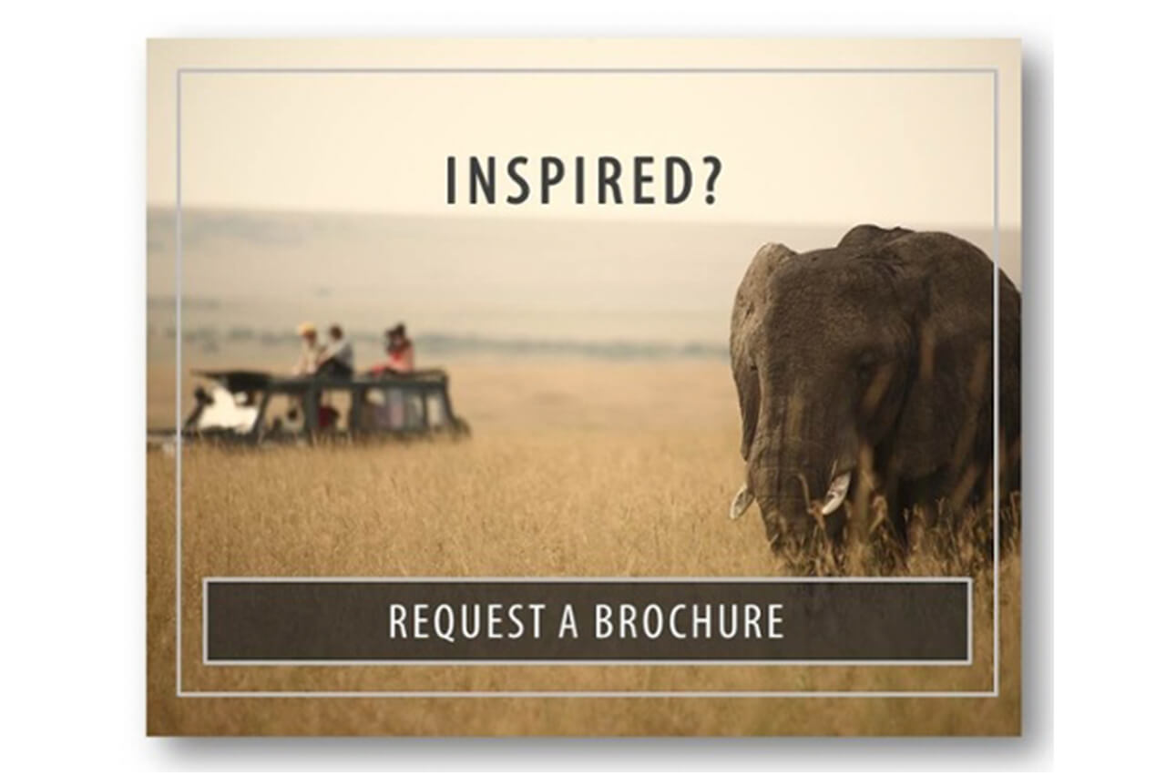 Inspired - request a brochure and go on a game drive in Africa