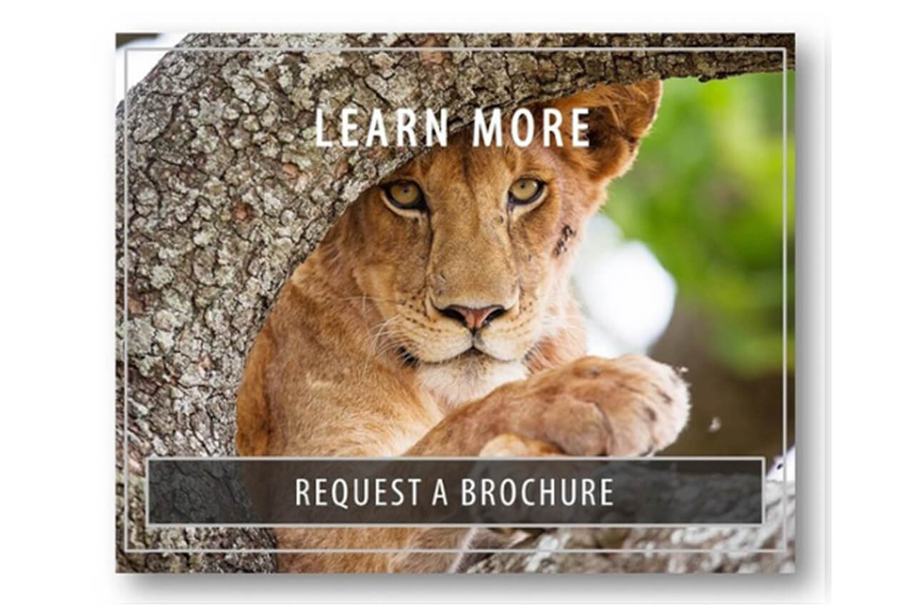 Learn more - Request a brochure