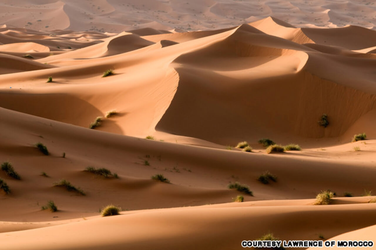 Sahara Dunes - Courtesy of Lawrence of Morocco
