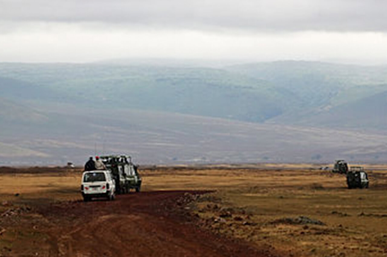 Travelers on a Game Drive Inside Ngorongoro Crater