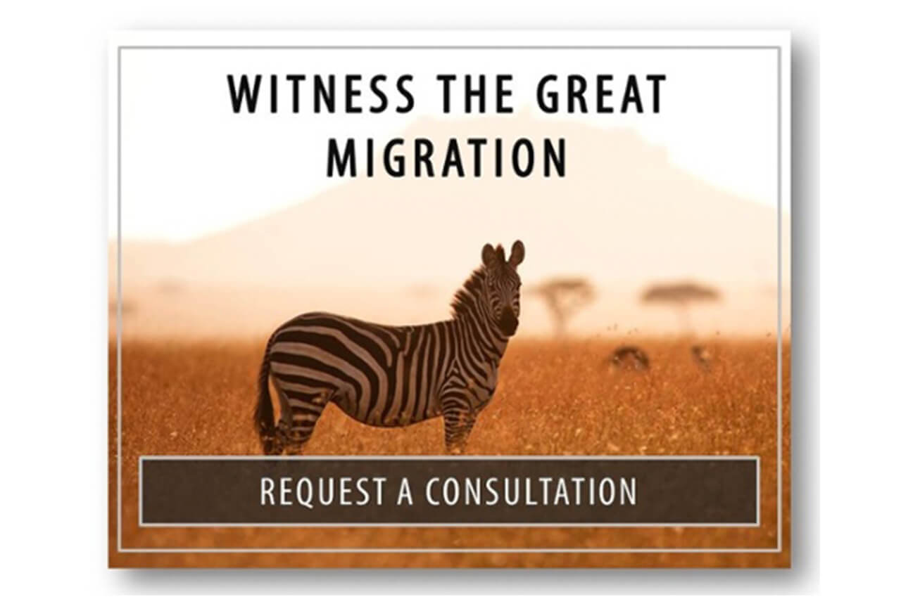 Witness the Great Migration - Request a Consultation with Bushtracks Expeditions